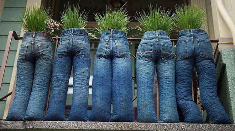 pantalones viejos como macetas