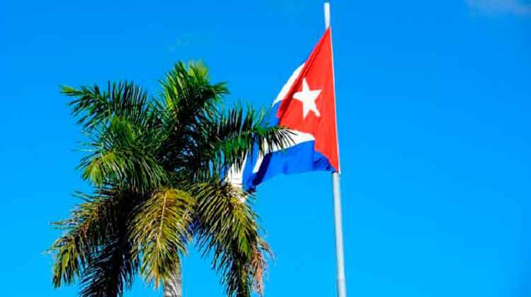 i-bandera-y-palma-cubania-JR