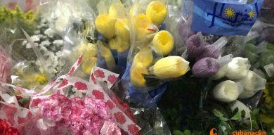 Con el lenguaje de las flores