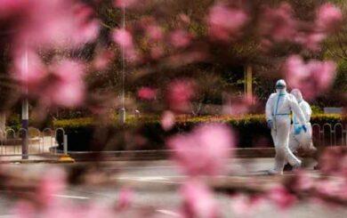 Comisión de Salud de Hubei, en China, anuncia el fin de las restricciones de viaje