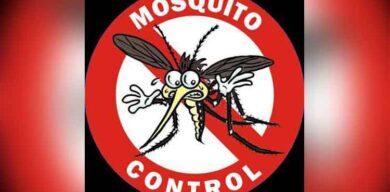 Intensificar el autofocal en viviendas: otra batalla contra el Aedes aegypti