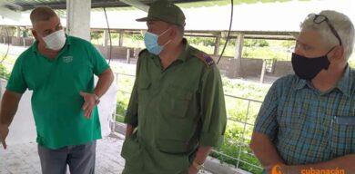 Gobernador de Villa Clara chequea inversiones en la Agricultura